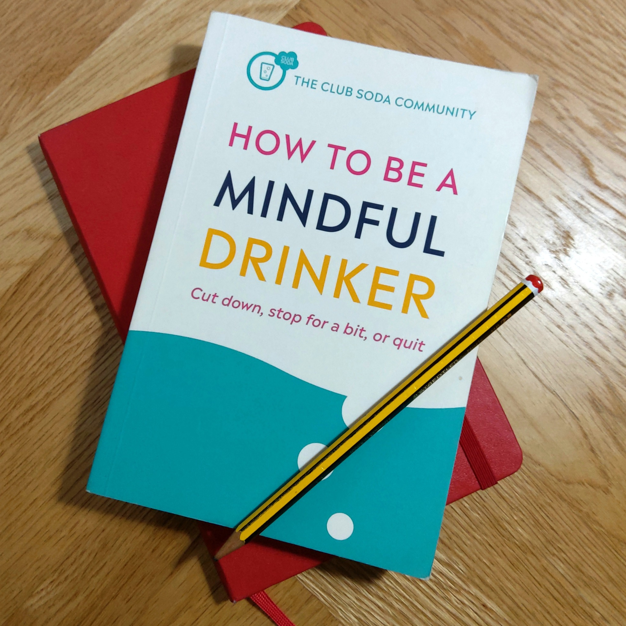 Picture of the book How to Be a Mindful Drinker by Dru Jaeger