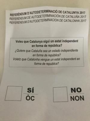 faux referendum
