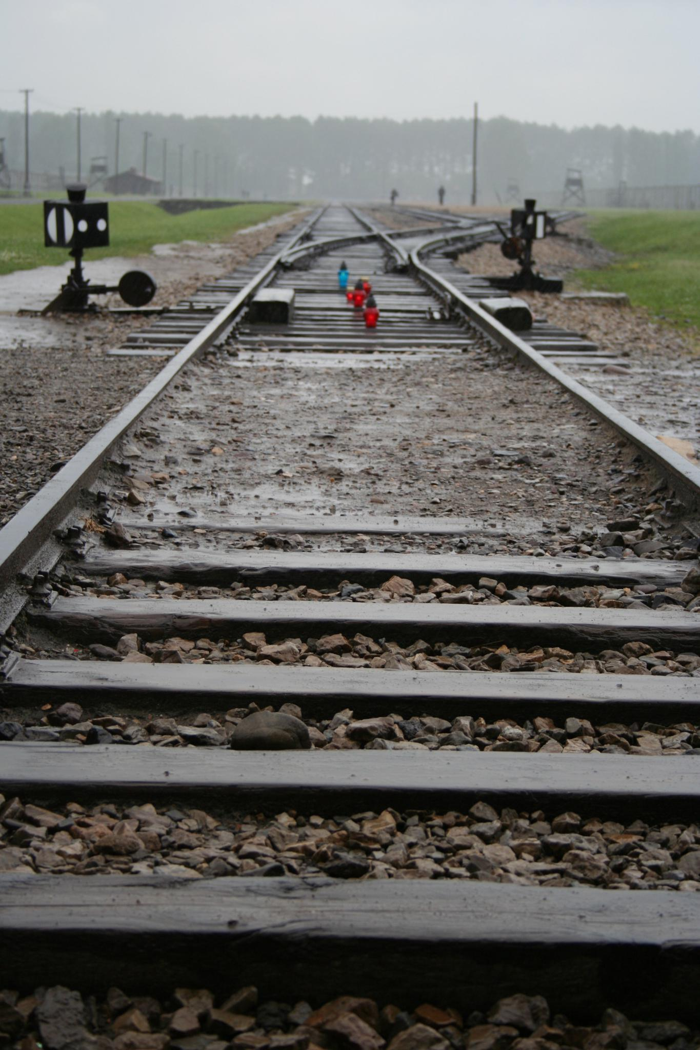 Train tracks that lead into the Auschwitz Nazi concentration camp, Poland.