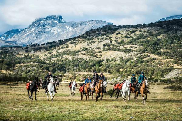 Horses Patagonia