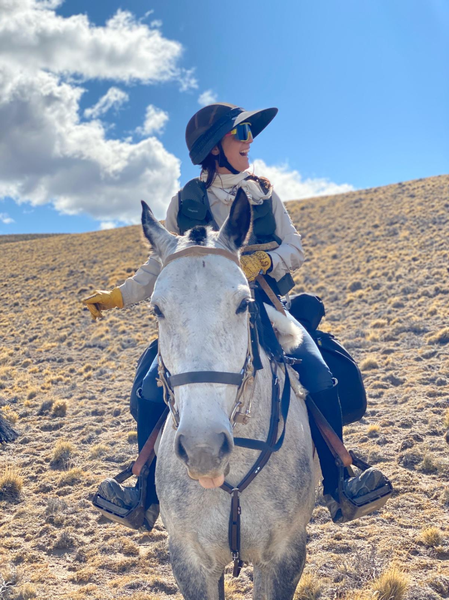 horse adventure wilderness Patagonia Adventurists