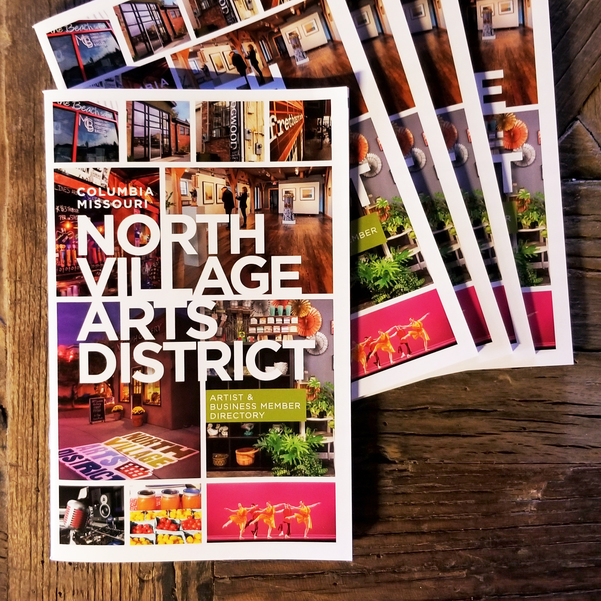 2019 North Village Arts District Brochure
