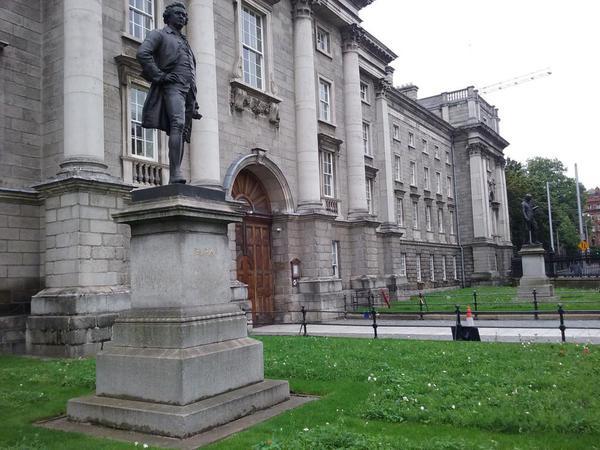 Trinity College Dublin, wildflower meadow